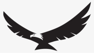 eagle wings png transparent eagle wings png image free download pngkey eagle wings png transparent eagle