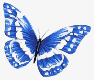b55b3991d Blue Morpho Butterfly Tattoo In Watercolor Art With - Blue And White  Butterfly Tattoo #13592
