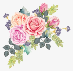 Watercolor Rose Png Transparent Watercolor Rose Png Image Free