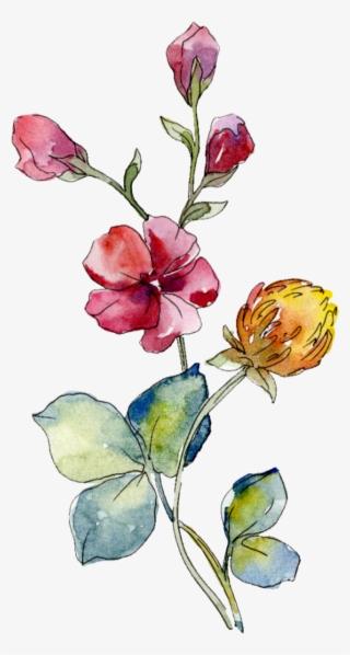 Watercolor Flowers PNG, Transparent Watercolor Flowers PNG