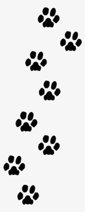 Dog Paw Print Png Transparent Dog Paw Print Png Image Free Download Pngkey Find this pin and more on dog art by damask diva. dog paw print png transparent dog paw