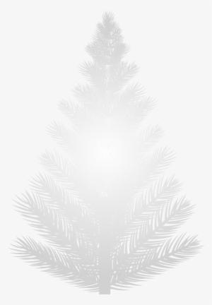 White Tree Png Transparent White Tree Png Image Free Download Pngkey