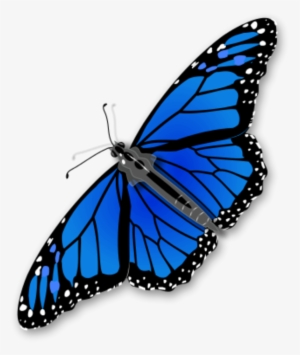 7bf221509 Large Monarch Butterfly 0 6281 - Blue Monarch Butterfly Clipart #1142951