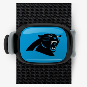 Carolina Panthers Stwrap - Carolina Panthers New  1723440 1869d4f0b