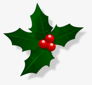Christmas Holly Clipart Png.Christmas Holly Png Transparent Christmas Holly Png Image