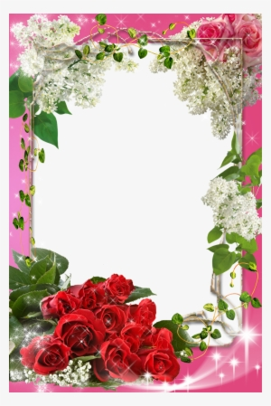 Flower Frame Png Transparent Flower Frame Png Image Free Download