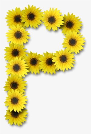 Alfabeto Florido Girassol Png - Letter A In Sunflower ...