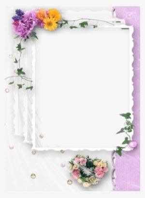 Wedding Photo Frames.Wedding Frame Png Transparent Wedding Frame Png Image Free Download