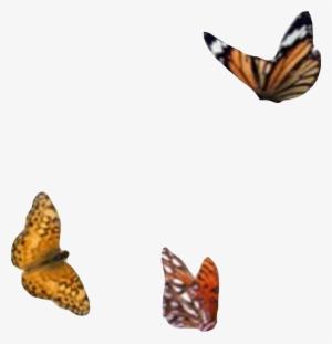 For Picsart PNG, Transparent For Picsart PNG Image Free