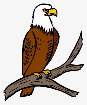 Eagle Clipart Png Transparent Eagle Clipart Png Image Free Download Pngkey