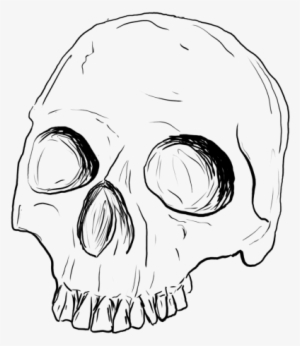 Skull Drawing Png Transparent Skull Drawing Png Image Free Download Pngkey
