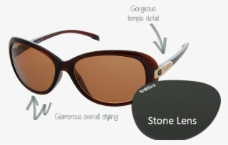 9fcdd66952a Spotters Sunglasses - Suntrends Sunglasses St-157  4775676