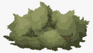 Bush PNG, Transparent Bush PNG Image Free Download - PNGkey