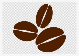 coffee bean vector png transparent coffee bean vector png image free download pngkey coffee bean vector png transparent