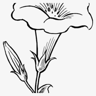 Flower Free Clipart Black And White Flowers Healthy