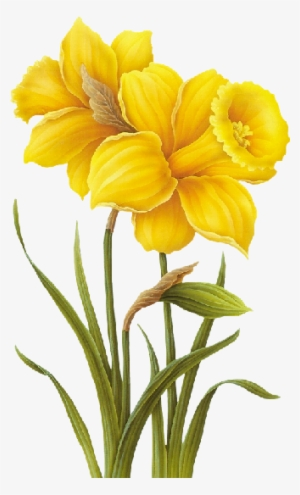 yellow flowers png transparent yellow flowers png image free download pngkey yellow flowers png image free download