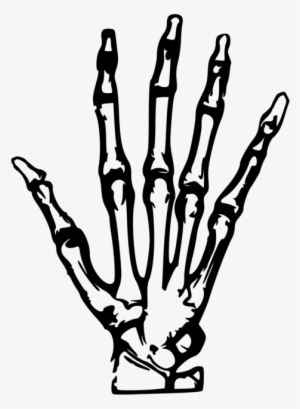 Hand Clipart Transparent Hand Clipart Image Free Download
