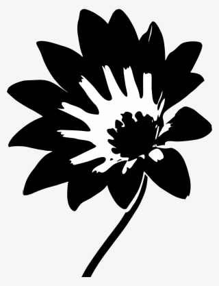 White Daisy PNG, Transparent White Daisy PNG Image Free Download