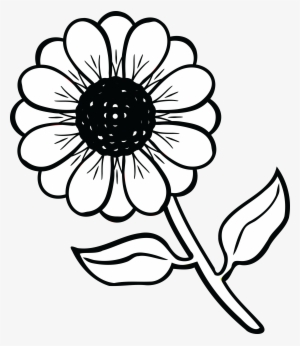 Flower black and white cute. Png transparent